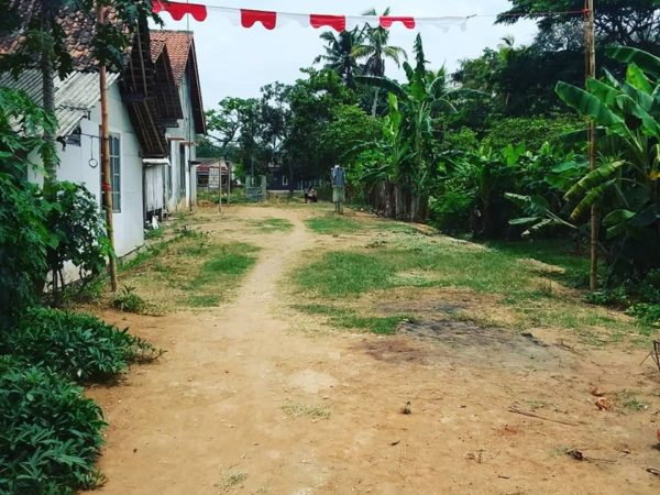Dijual Murah Tanah Depan Jalan Raya Sidareja - Wringinharjo