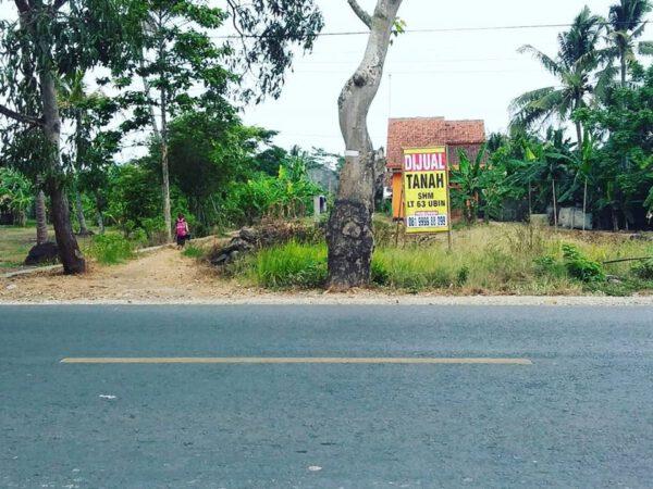 Tanah Murah Jl. Ampera Sidareja Muka Lebar ( 300 Meter dari Stasiun Sidareja )