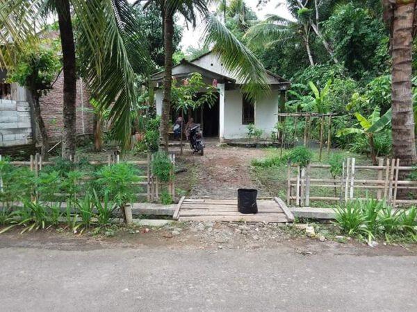 Beli Tanah Bonus Rumah Cikalong Sidareja (2 Menit dari Alun-Alun dan Terminal Sidareja)  Cilacap Jawa Tengah